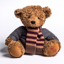 Picture for category Teddy Bear Scarves